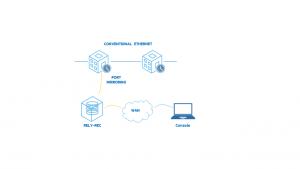 port-mirroring recording relyum